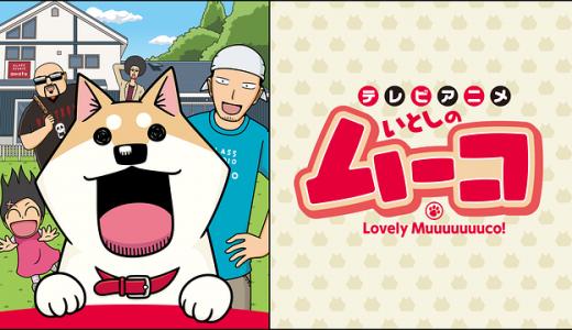 『テレビアニメいとしのムーコ』はHulu・U-NEXT・dアニメストアのどこで動画配信してる?