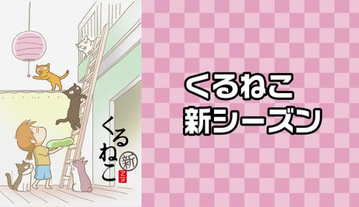 『くるねこ 新シーズン』はHulu・U-NEXT・dアニメストアのどこで動画配信してる?