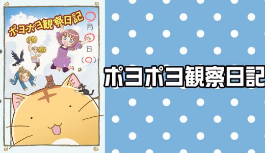 『ポヨポヨ観察日記』はHulu・U-NEXT・dアニメストアのどこで動画配信してる?