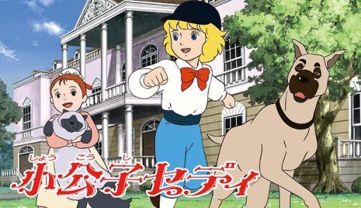 『【世界名作劇場】小公子セディ』はHulu・U-NEXT・dアニメストアのどこで動画配信してる?